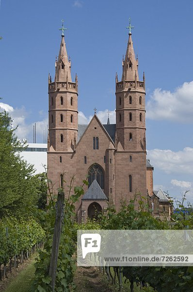 The 13th to 15th century Liebfrauenkircke  Worms  Rhineland Palatinate  Germany  Europe