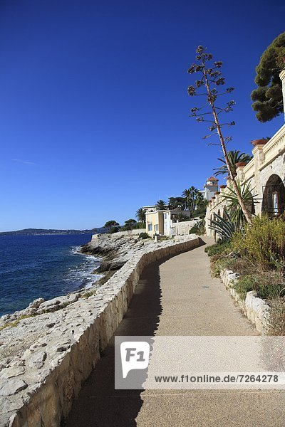 Frankreich Europa Provence - Alpes-Cote d Azur Cote d Azur Küstenstraße