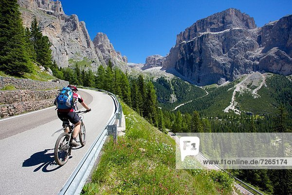 Cyclists  Sella Pass  Trento and Bolzano Provinces  Trentino Alto Adige/South Tyrol  Dolomites  Italy  Europe