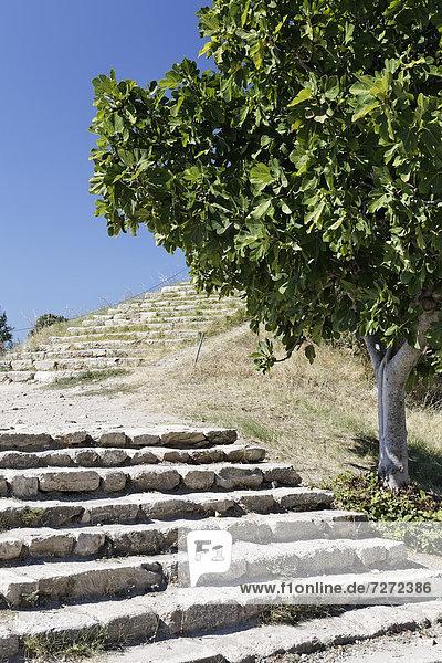 Stairs at Troy  Truva  Canakkale  Marmara  Turkey  Asia