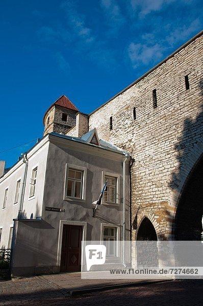 Tallinn  Hauptstadt  Europa  Wand  Straße  Stadt  Eingang  Verteidigung  vorwärts  Estland  alt