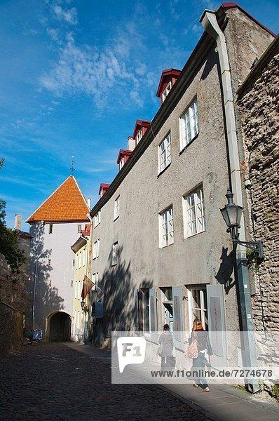 Tallinn  Hauptstadt  Europa  Straße  führen  Stadt  Estland  alt