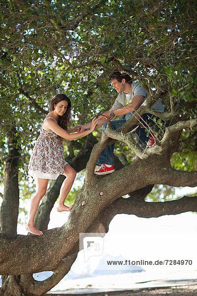 Paar klettert auf einen Baum