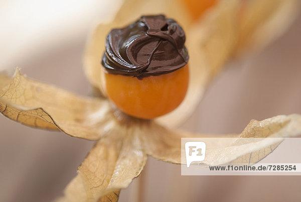 Schokolade auf Blumenfrüchten