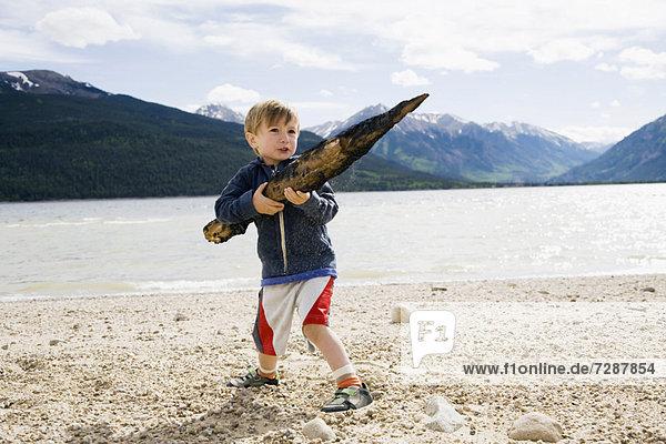 Boy (2-3) holding piece of wood