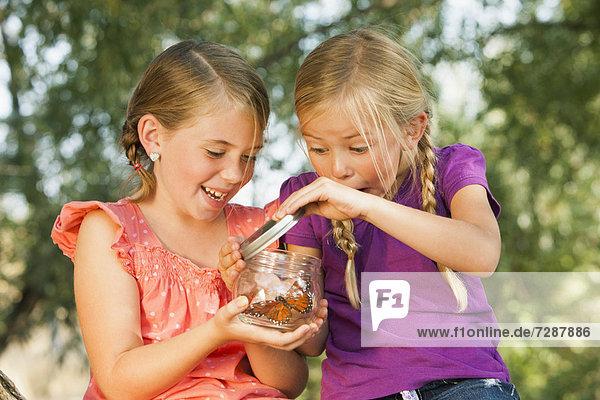 Schmetterling  Begeisterung  5-9 Jahre  5 bis 9 Jahre