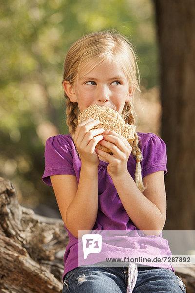 klein  Sandwich  Marmelade  5-6 Jahre  5 bis 6 Jahre  essen  essend  isst  Erdnuss  Mädchen  Butter  Götterspeise