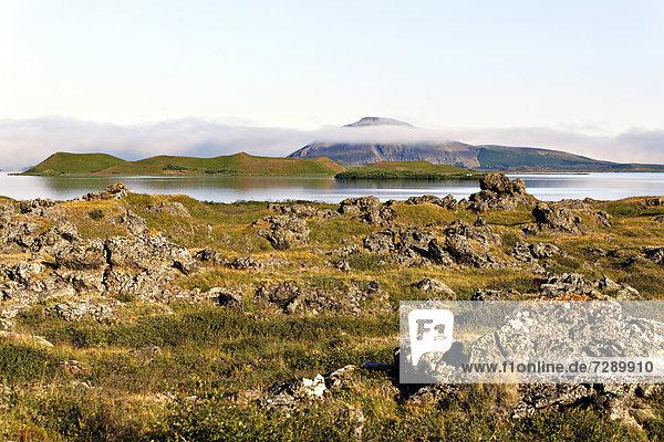 Myvatn-See  Island  Europa