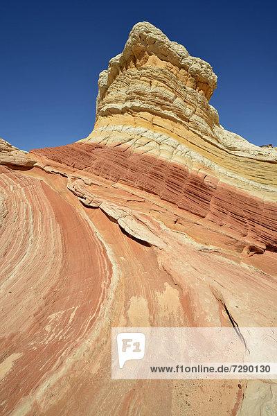 Lollipop Rock  Brain Rocks at White Pocket  eroded Navajo sandstone rocks with Liesegang bands or Liesegang rings  Pareah Paria Plateau  Vermillion Cliffs National Monument  Arizona  Utah  Southwestern USA  USA