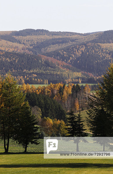 Germany  Saxony  View of landscape with autumn trees
