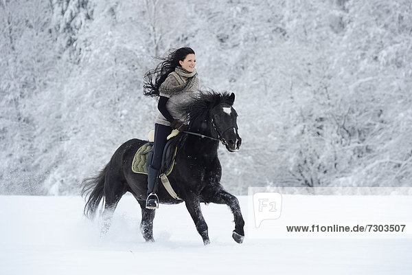 Young Woman Riding On Horse In Snow 20121218sheld18