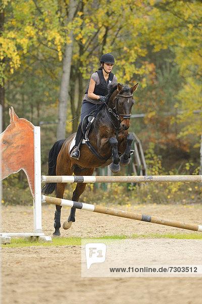 Junge Frau auf einem Pferd reitet einen Parcours