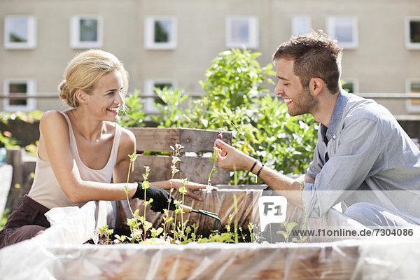 Fröhliches junges Paar beim Gärtnern im Stadtgarten