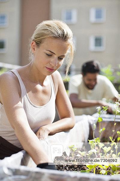 Junge Frau beim Gärtnern im Stadtgarten mit Mann im Hintergrund