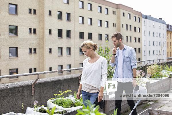 Junges Paar untersucht Topfpflanzen im Stadtgarten