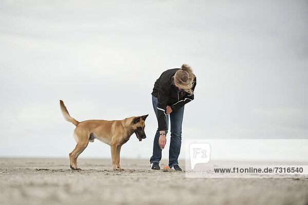 Frau und Hollandse Herdershond  Holländischer Schäferhund  Herder am Strand  Sankt Peter-Ording  Schleswig-Holstein  Deutschland  Europa