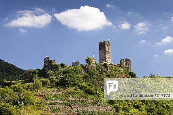 Burg Metternich  Beilstein  Mosel  Rheinland-Pfalz  Deutschland  Europa  ÖffentlicherGrund