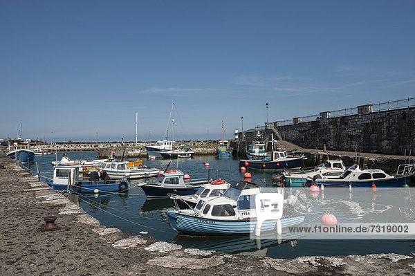 Hafen mit Fischerbooten  Carnlough  Nordirland  Großbritannien  Europa