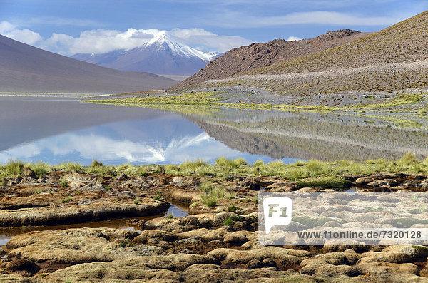Lagune auf dem Altiplano  bei Uyuni  Bolivien  Anden  Südamerika