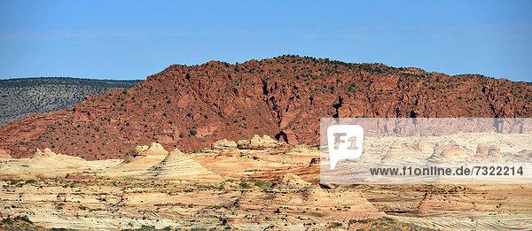 The Gulch  Coyote Buttes South CBS  erodierte Navajo-Sandsteinfelsen mit Liesegang Bands  auch Liesegangen Rings oder Liesegang Rings  Pareah Paria Plateau  Vermilion Cliffs National Monument  Arizona  Utah  Südwesten  Vereinigte Staaten von Amerika  USA
