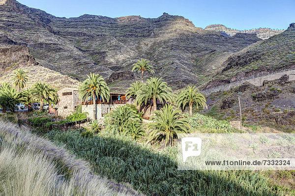 nahe Bauernhaus Europa Berg Kanaren Kanarische Inseln Gran Canaria Spanien