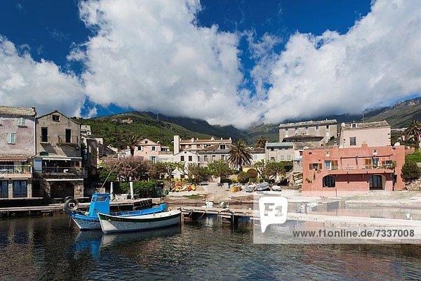 France  Corsica  Haute-Corse Department  Le Cap Corse  Erbalunga  town harbor