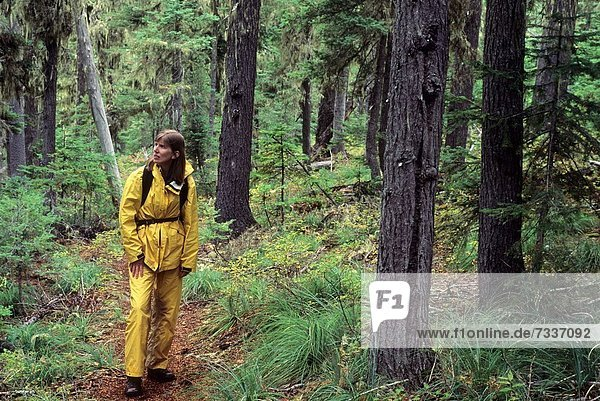 folgen  Wald  See  antik  Krone  Oregon