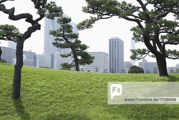 Stadtbild vom Hamarikyu Park  Japan