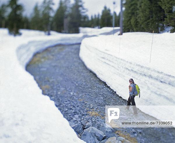 Wanderin auf freiem Weg auf dem Mount Seymour  Vancouver  Kanada Wanderin auf freiem Weg auf dem Mount Seymour, Vancouver, Kanada