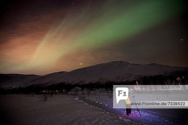 Nordlicht über dem Kattfjordpass im Winter  Kvaloya  Tromsö  Norwegen  Europa