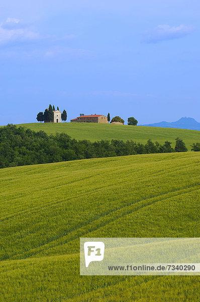 Cappella di Vitaleta  Vitaleta-Kapelle  Pienza  Val d'Orcia  UNESCO Weltkulturerbe  Provinz Siena  Toskana  Italien  Europa