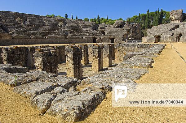 Santiponce  Italica  römische Ruinen von Italica  Sevilla  Andalusien  Spanien  Europa