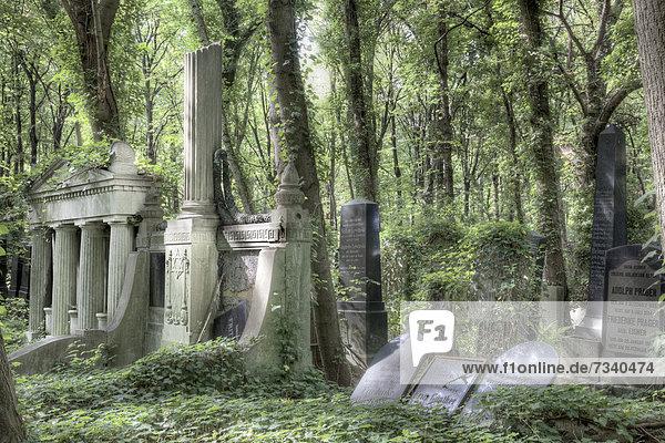 Jüdischer Friedhof Weißensee  Berlin  Deutschland  Europa