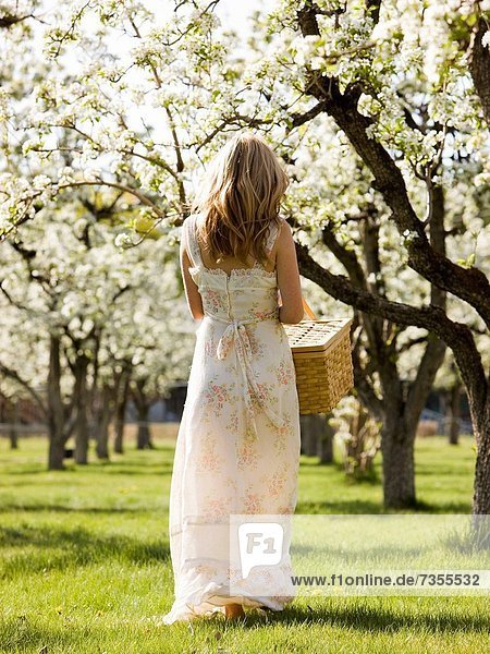 Frau  Picknick  Korb  halten  weiß  Kleid