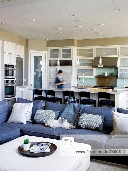 Vereinigte Staaten von Amerika USA Entspannung Couch Wohnhaus Reichtum Utah