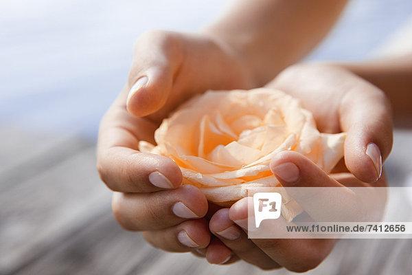 Frau Schröpfen Rose in den Händen