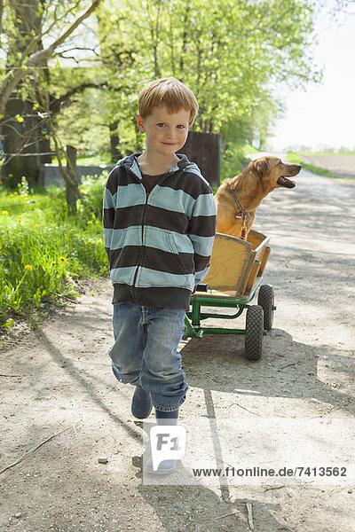 Junge Zugwagen mit Hund