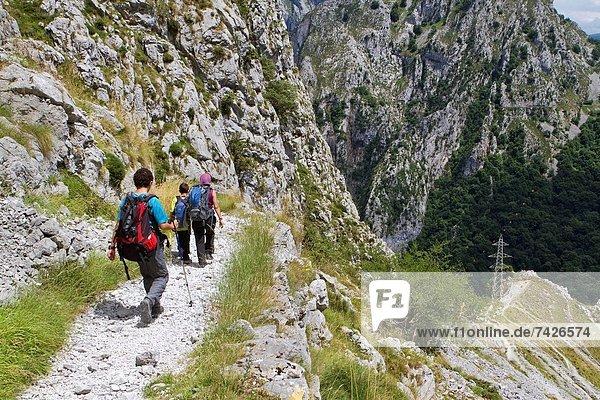 Nationalpark klein Weg Geschichte Dorf Europa