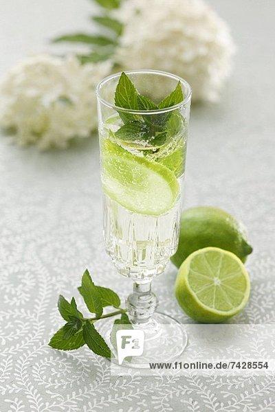 Hugo (Cocktail mit Holunderblütensirup  Sekt und Limetten)