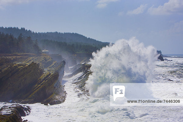 Cape Arago on the Central Oregon Coast  High waves crashing against the cliffs and sea stacks