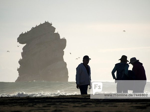 People on the beach in Morro Bay  California
