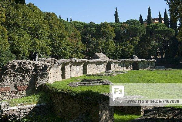Europa  Arezzo  Italien  Toskana