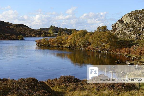 Europa  Großbritannien  Herbstlandschaft  Highlands  Schottland  Sutherland