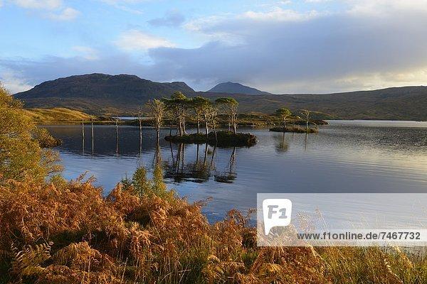 Europa  Großbritannien  Highlands  Schottland  Sutherland