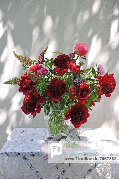 Außenaufnahme  Blume  Bündel  rot  freie Natur