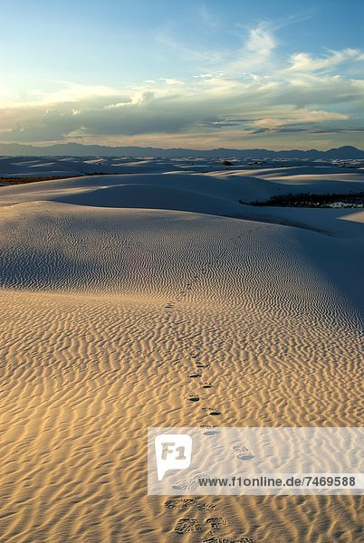 Rippled gypsum  sand dunes in the White Sands National Monument  New Mexico  United States of America  North America