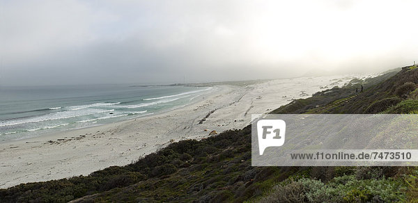 Südliches Afrika Südafrika Kapstadt Long Beach Western Cape Westkap