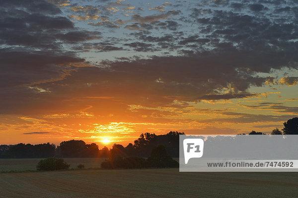 Sonnenaufgang  Deutschland  Hessen