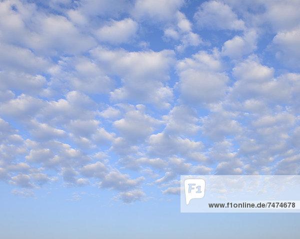 Clouds  Gunzenhausen  Weissenburg-Gunzenhausen  Bavaria  Germany