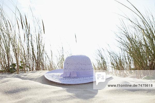 Sonnenhut  Frankreich  Aquitanien  Gironde